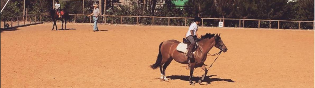 Profesor de Equitación
